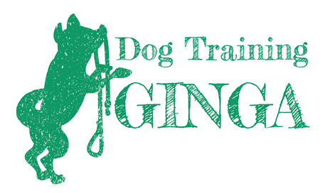 Dog Training GINGA(ドッグトレーニング ギンガ)